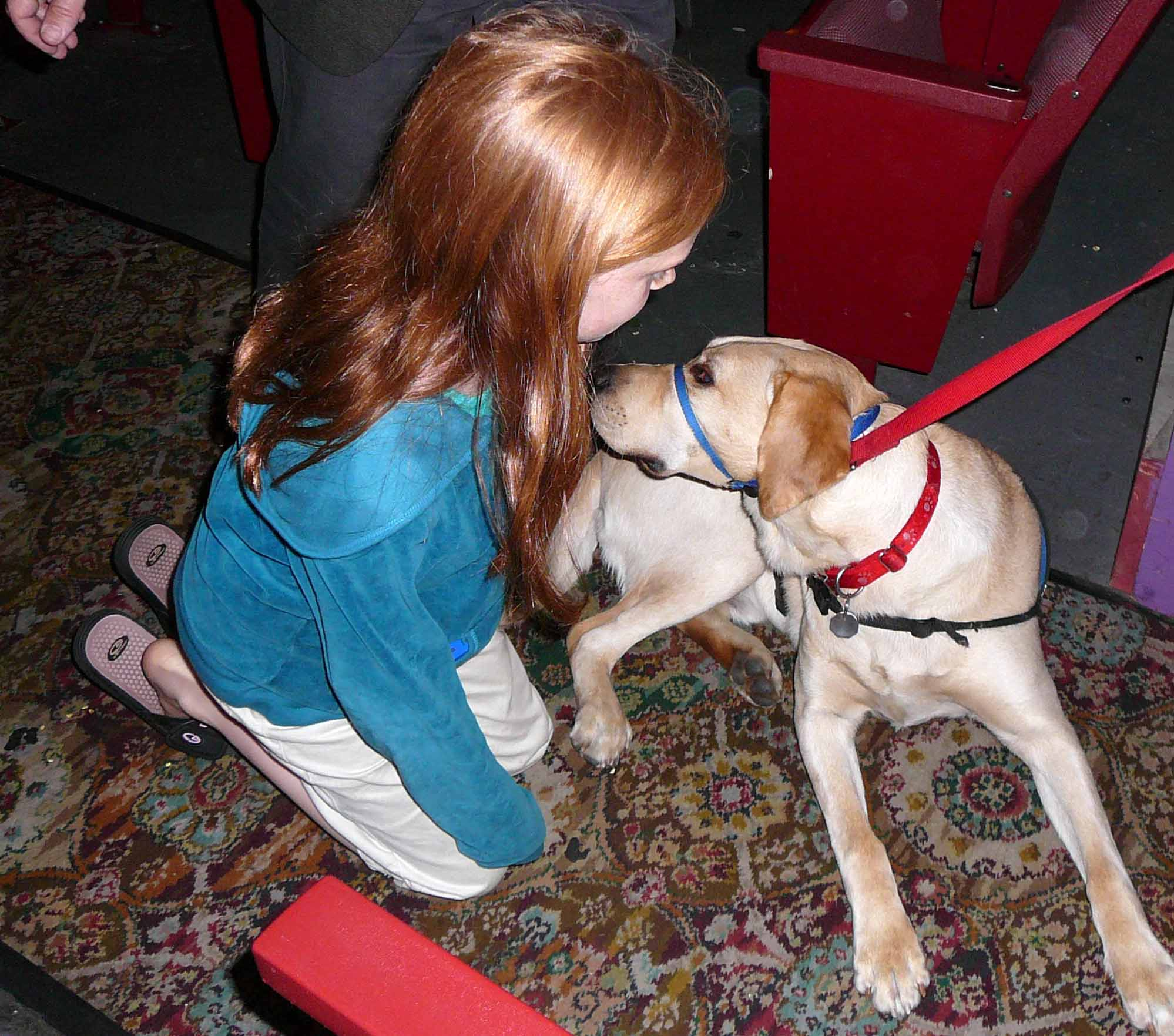 Julia Ruderman meets a NEADS service dog