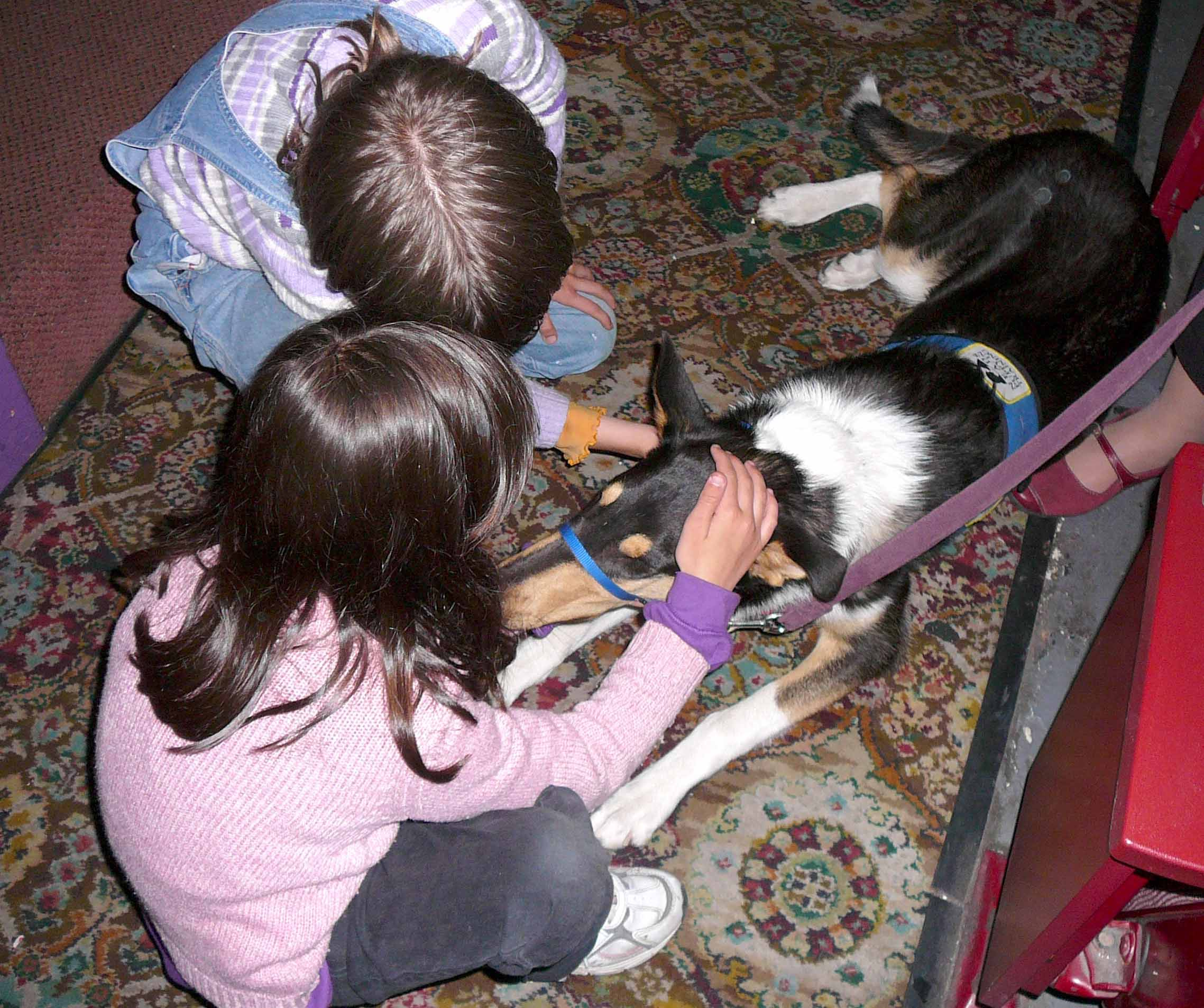 Young attendees meet a NEADS service dog in training