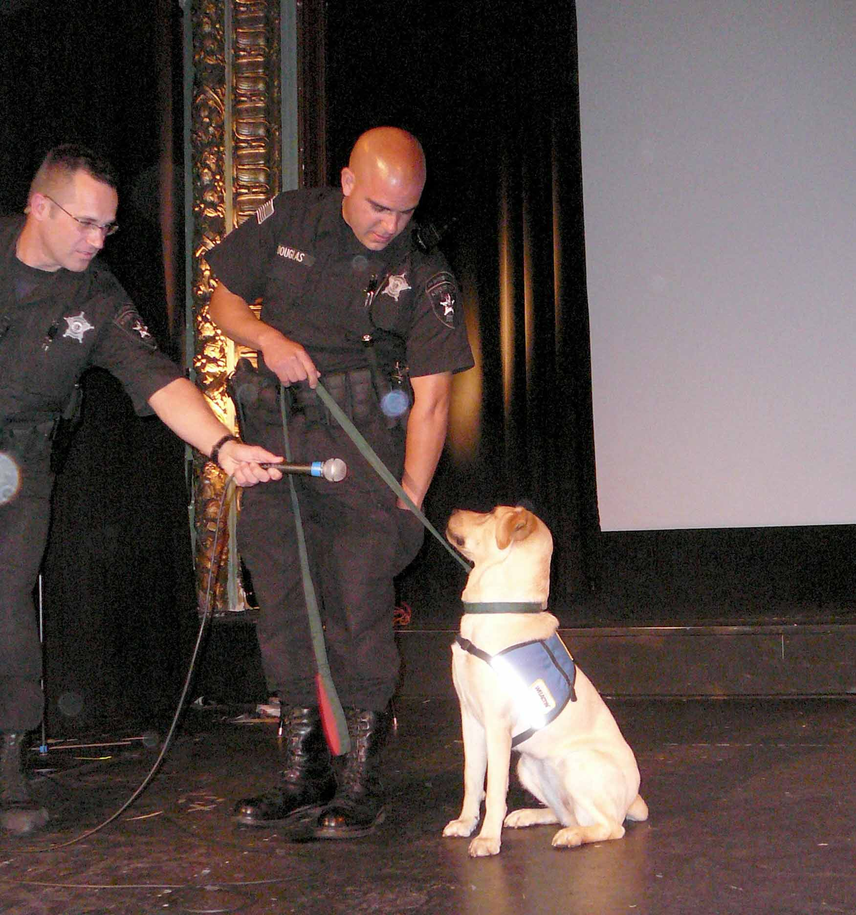 Deputies Douglas and Clavin introduce Shine